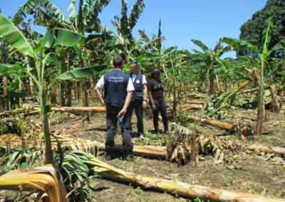Urgence Haïti pompiers solidaires 2 web